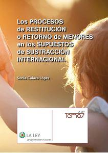 Imagen de Los procesos de restitución o retorno de menores en los supuestos de sustracción internacional