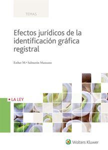 Imagen de Efectos jurídicos de la identificación gráfica registral