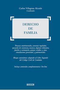 Imagen de Derecho de Familia