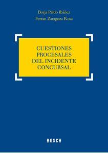 Imagen de Cuestiones procesales del incidente concursal