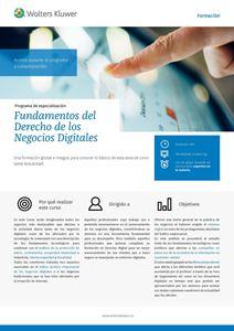 Imagen de Fundamentos del Derecho de los Negocios Digitales