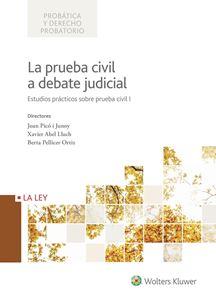 Imagen de La prueba civil a debate judicial