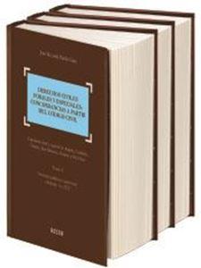 Imagen de Derechos civiles forales y especiales: concordancias a partir del código civil