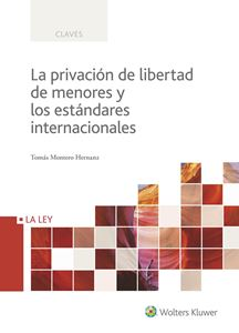 Imagen de La privación de libertad de menores y los estándares internacionales