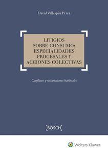 Imagen de Litigios sobre consumo: especialidades procesales y acciones colectivas