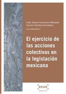 Imagen de  El ejercicio de las acciones colectivas en la legislación mexicana