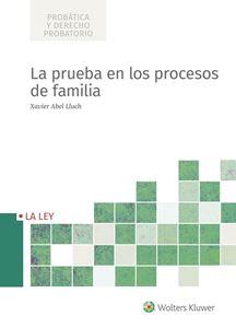 Imagen de La prueba en los procesos de familia