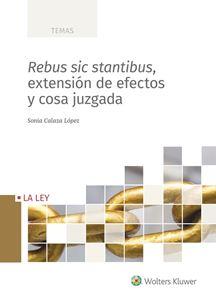 Imagen de Rebus sic stantibus, extensión de efectos y cosa juzgada