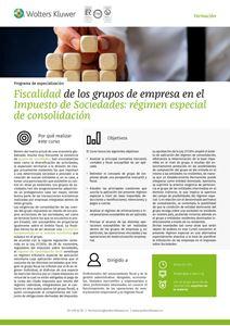 Programa de especialización Fiscalidad de los grupos de empresa en el Impuesto de Sociedades: régimen especial de consolidación